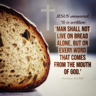 not-bread-alone-1024x1024